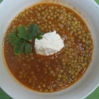Spicey Lentil Stew