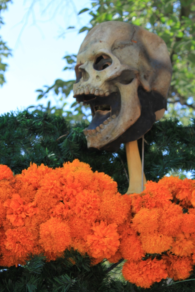 Day of the Dead and San Angel