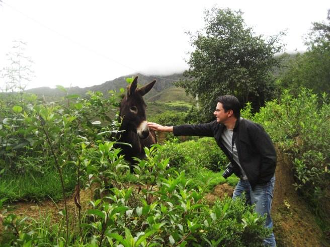 Peru 2011 319