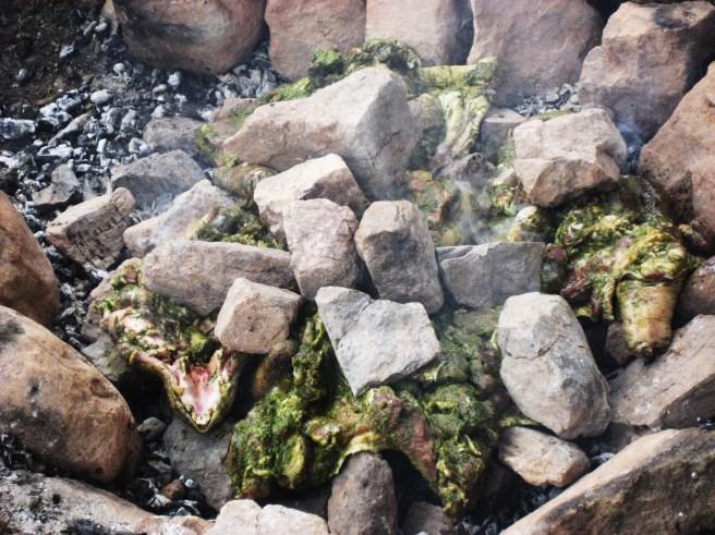 Peru 2011 347