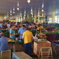 Exploring Brasilia's Markets!
